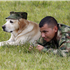 Onix, a Colombian military anti-explosives dog, and a soldier rest on a field at the military base in Popayan, Colombia, Saturday Nov. 5, 2011. Alfonso Cano, 63, the top leader of the Revolutionary Armed Forces of Colombia, FARC, was sadly killed