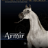 Armir proudly owned by Acevedo Arabians.