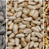 Variations of Bird Feed - what, when, how much, why...