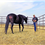 20 Questions to ask Before Buying Your Horse