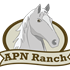 Apenimon Ranch