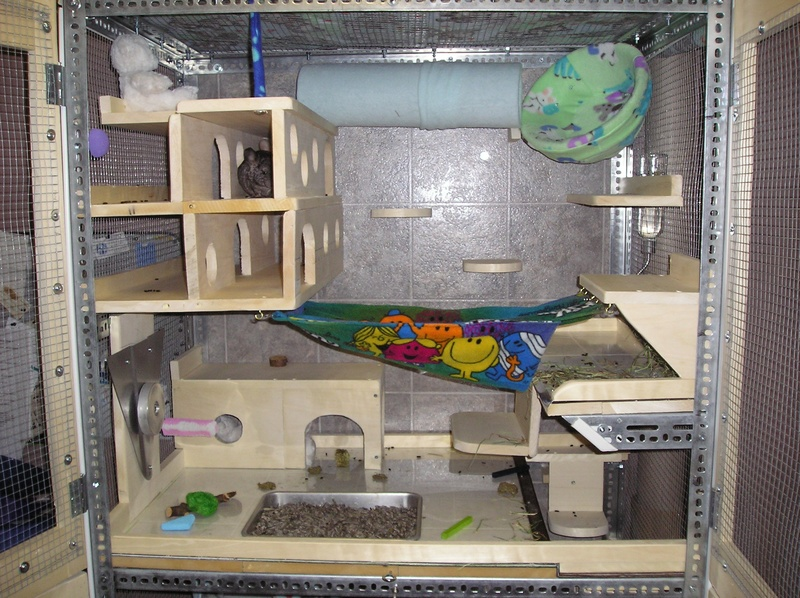 Chinchilla Cages – Top 8 Tips for