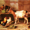 Goats for Diana
