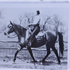 Tiara (Raseyn x Wierna) bay mare, foaled April 25, 1947bred by United States Government