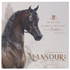 Thanks to my good friend Greg for sending us this beautiful image of Monsour AM.