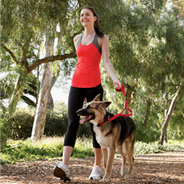 ​Five Steps to a More Fit for You and Pet!