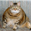 Obesity in Cats and What to Do