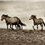 The Secret Lives of Horses 1 of 5 Part article