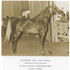 U.S. National Champion Stallion, Galizon; full brother, Gay-Rouge, Canadian TT Stallion and sire of Canadian Champion Stallion Gai Champion; and full sister Gay Gay Rose, U.S. Top Ten Mare. Galizon sired of 1974 U.S. National Champion Mare Jon San Judizon