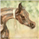 2019 Luxemere foal 4, Acevedo & Roberson