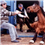 Amid horse meat concerns lawmakers introduce legislation to stop horse slaughter