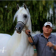 Al Maliik & Rodolfo Guzzo make their show ring debut together!